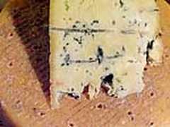 Закваска для сыра Горгонзола Дольче
